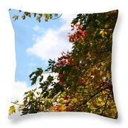 Autumn To Perfection Throw Pillow