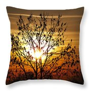 Autumn Tree In The Sunset Throw Pillow by Michal Boubin