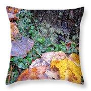 Autumn Tree Trunk  Throw Pillow