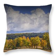 Autumn Trees In A Row Throw Pillow