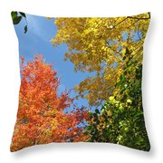 Autumn Treetops Throw Pillow