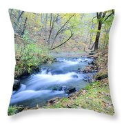 Autumn Tributary Throw Pillow