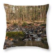 Autumn Tributary Path Throw Pillow