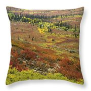 Autumn Tundra With Boreal Forest Throw Pillow