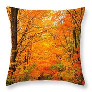 Autumn Tunnel Of Trees Throw Pillow