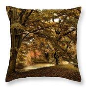 Autumn Umbrella Throw Pillow