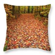 Autumn Walk In Ohio Throw Pillow