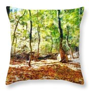 Autumn Warmth Throw Pillow