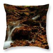Autumn Washed Away Throw Pillow