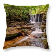 Autumn Waterfall Throw Pillow by Adrian Evans