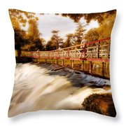 Autumn Waterfall / Maynooth Throw Pillow by Barry O Carroll