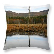 Autumn Wetlands Throw Pillow