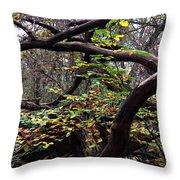 Autumn Wild Nature Denmark Throw Pillow