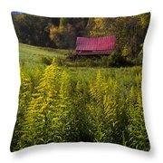 Autumn Wildflowers Throw Pillow by Debra and Dave Vanderlaan