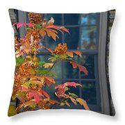 Autumn Window Throw Pillow