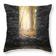 Autumn Within Long Pond Ironworks - Historical Ruins Throw Pillow