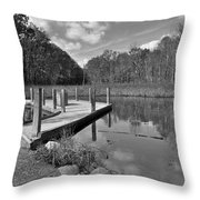 Autumn Without Color Throw Pillow