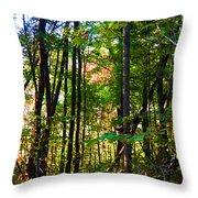 Autumn Wood Throw Pillow