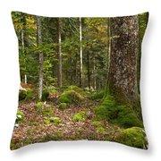 Autumn Woodland Throw Pillow