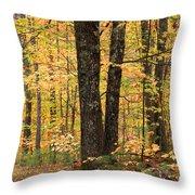 Autumn Woods 1 Throw Pillow