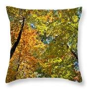 Autumn Woods Sky View Throw Pillow