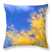 Autumn Xiv Throw Pillow