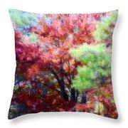 Autumn Xxxxiv Throw Pillow