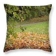 Autumnal 1 Throw Pillow