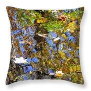 Autumnal Abstracious Throw Pillow
