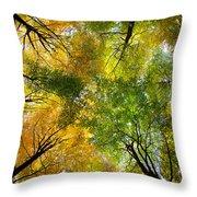 Autumnal Display Throw Pillow
