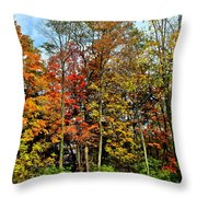 Autumnal Foliage Throw Pillow