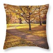 Autumnal Park Throw Pillow