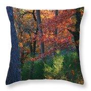 Autumnal Rock Throw Pillow