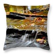Autumnal Serenity Throw Pillow
