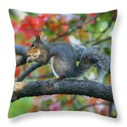 Autumnal Squirrel Throw Pillow