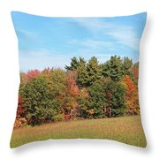 Autumnal Wave Throw Pillow