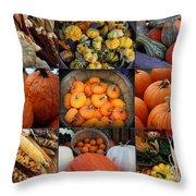 Autumn's Bounty Throw Pillow