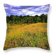 Autumns Brilliance Hdr Throw Pillow