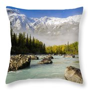 Autumns Colors Contrast With Winters Throw Pillow by Ray Bulson