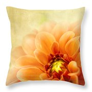 Autumns Dance In The Garden Throw Pillow by Beve Brown-Clark Photography