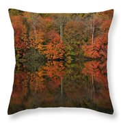 Autumns Design Throw Pillow by Karol Livote