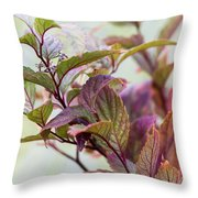Autumns Finest Throw Pillow by Dana Moyer