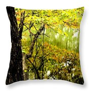 Autumn's First Reflections II Throw Pillow