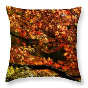 Autumn's Glory Throw Pillow by Anne Gilbert