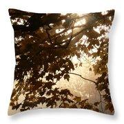 Autumns Golden Morning Throw Pillow