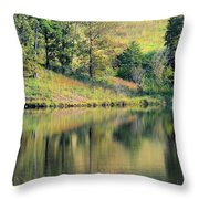 Autumn's Golden Peace Throw Pillow