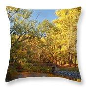 Autumn's Golden Pond Throw Pillow by Kim Hojnacki