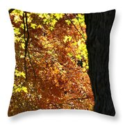 Autumn's Golds Throw Pillow