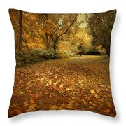 Autumn's Passage Throw Pillow