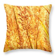 Autumns Passion Throw Pillow